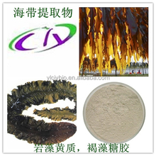 White Powder organic kelp extract/ seaweed extract fucoidan 85%,90%