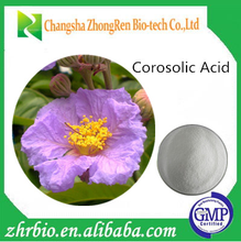 Best selling products Herbal extract Corosolic Acid 98%/lose weight Banaba Leaf Extract
