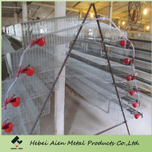 galvanized quail cage for sale