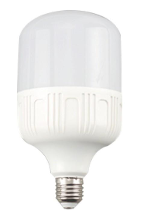 LED-T60-10W.jpg