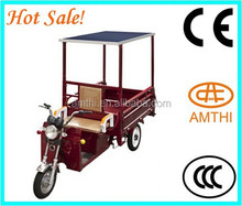 New Product Brushless For Scooter Electric Electric Tricycles Three Wheel Motorcycle With Solar Panel,Amthi