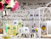 Resorts amenities product/High quality Hotel Amenity set in carton box/popular design amenity set