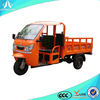china 300cc tricycle car/ adult pedal cars for adults