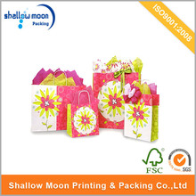 Unique Design Widely Used Wholesale Eco-Friendly Cheap Paper Package Bag.