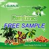 FDA Registered Cucumber Extract 10:1 20:1