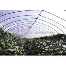 Greenhouse Film (Agricultural Film) plastic package material in China
