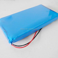 12v 4000mah li-ion/lithium ion rechargeable battery pack