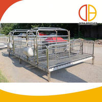New product elevated pig cage for sale