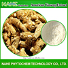 Health food American Ginseng root, organic tonic American Ginseng extract
