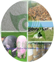 Animal Feed Science 50% Coated Sodium Butyrate/ coated sodium butyrate 30% 90% feed additives ex our factory low price