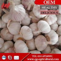 2015 fresh top quality normal white garlic with competitive price