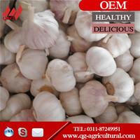 Chinese fresh white garlic 5.0cm 10kg/mesh bag or carton