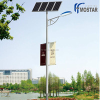 5 years warranty china supplier 30W IP65 led solar street light with CE Approved