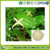 GMP Manufacture Epimedium extract Icariin 60% 98%