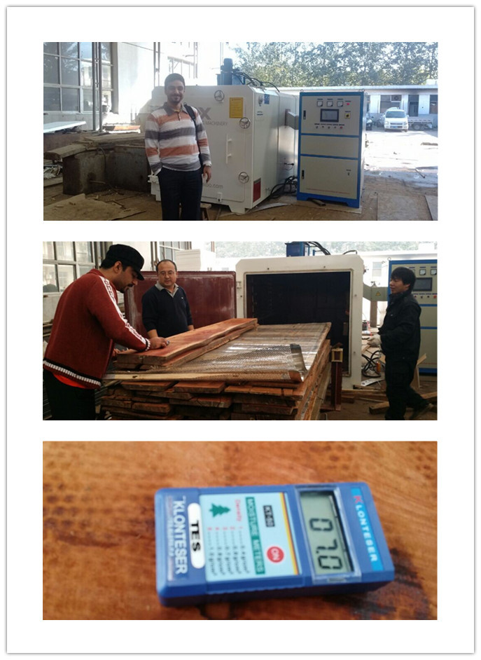 Daxin fast drying wood dryer machine for all kinds of timber