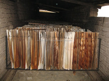 Dried Acacia Core Veneer 1270 x 640 x 2.0 mm - KECO COMPANY LTD