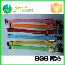 Hot Selling Leashes Stocked paper pet collar and leash