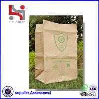 Dongguan factory Haiying oem eco packaging carry tote paper fancy yard waste bag
