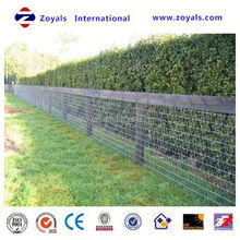 Professional ISO Manufacturer au prairie wire mesh horse hinge joint china fence