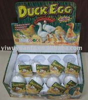 Growing Hatching Duck&Chicken Egg Toy