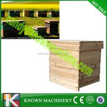 Madera de cedro bee hives / plástico bee hive marcos
