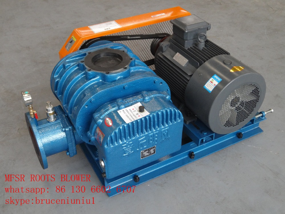 Roots Blower Air Cleaners : Blower buy electric snow root