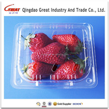 Plastic Fruit Packing Tray Strawberry Packing Tray with Lid