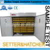 /product-gs/full-automatic-ostrich-egg-hatchery-factory-directly-egg-hatchery-machine-for-sale-60345738640.html