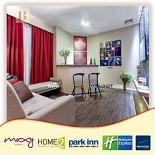 Brownie series modern hotel sleeper sofa in living room