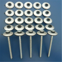 electro galvanized roofing nail with umbrella head rubber washer(factory)