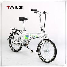 brushless motor green power Folding Electric Bike
