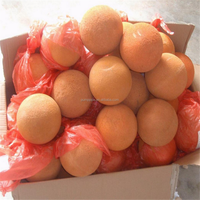 concrete pump spare parts,hard cleaning ball made in china