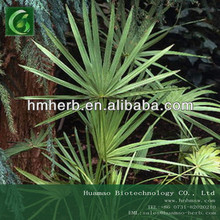 Saw Palmetto Extract saw palmetto extract/cas no. 84604-15-9