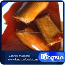 canned horse/jack/spanish/indian/pacific mackerel in tomato sauce