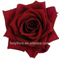 wholesale natural preserved flowers/ natural preserved roses/ natural preserved rose head for wedding decoration
