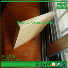 BIG PROMOTION WPC and PVC panel,profil pvc,wood plastic ONLY THIS MONTH-1