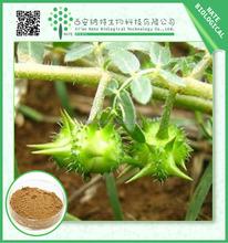 Organic Plant Extract Tribulus extract,Tribulus powder extract diosgenin Saponin