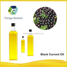 Bulk Pure 100% Organic Black Currant Seed Oil/Essential Oil/Herbal Extract
