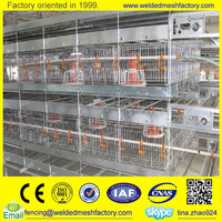 Poultry layer egg /broiler chicken house chicken farm equipment