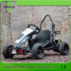 Top Quality Cheap 500W Mini Electric Go Kart for Sale