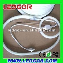 LED Neon Flex Power supply with 110V American plug