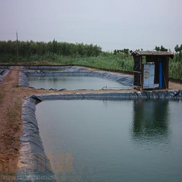 Plastic fish ponds bing images for Used koi pond for sale