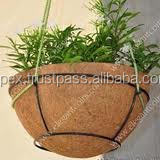 when to plant hanging baskets uk