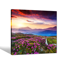 Mountain Landscape Canvas Printing/Flower Picture for Home Decor/Natural Scenery Canvas Art