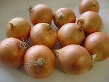 china factory directly fresh yellow onion