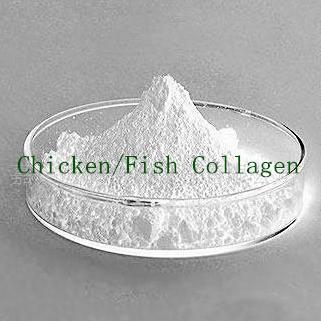 Fish collagen buy 100 fish collagen fish collagen for Fish collagen powder
