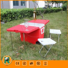 PE Material insulated box Customized beer frozen ice box