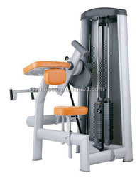 Commercial muscle strength machine/ Biceps Crul XH19/ new products sports equipment/ gym fitness equipment