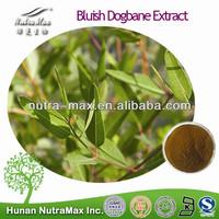 100% Natural Bluish Dogbane Extract,Bluish Dogbane Extract Powder,Bluish Dogbane Extract Supplier 5:1 10:1 20:1