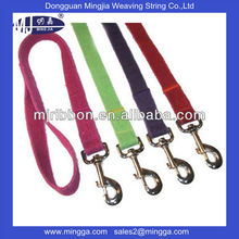 fancy fresh color pet collars and leashes for wholesale